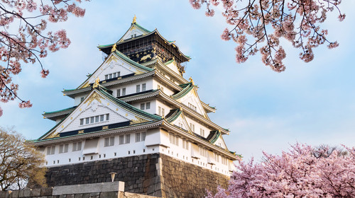 Osaka castle with cherry blossom. Japanese spring beautiful scene.