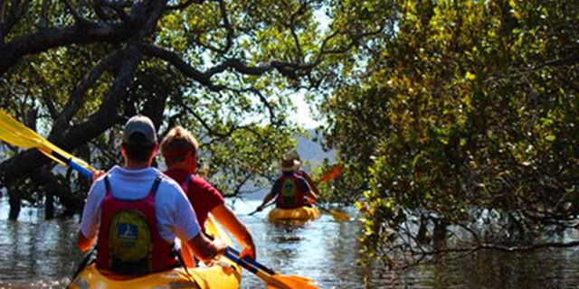 【兰塔红树林】半日游红树林皮划艇棒球国海钓团队图片