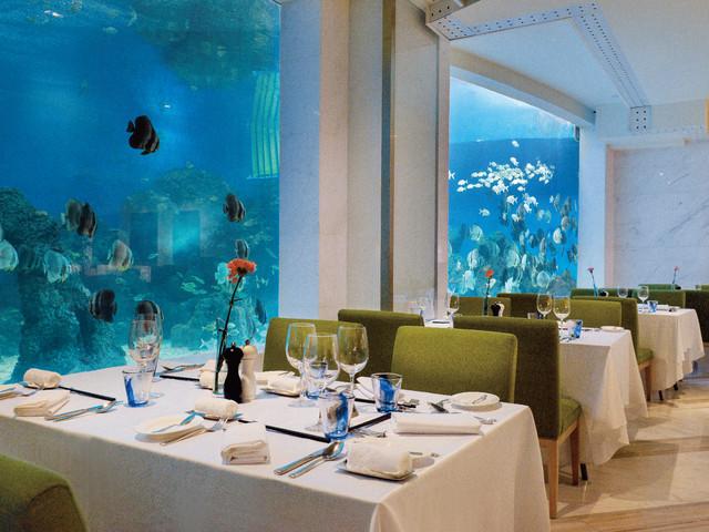 <海洋主题海蓝餐厅·三亚亚龙湾迎宾馆酒店(自助晚餐·午餐套餐)>含边用餐边欣赏海底世界+晚餐潜水员喂鱼秀+650㎡儿童乐园+旅行跟拍
