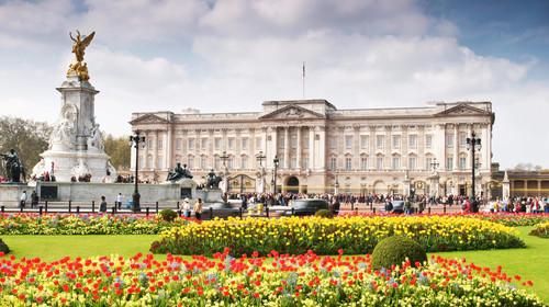 四姑娘山野生雪豹 英国王子否认性侵 英国机票+本地7晚9日游