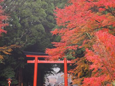 日本三年多次旅游签证