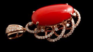 黑珍珠,红珊瑚