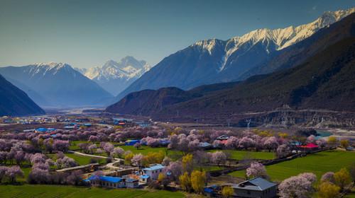 西藏風光 高原雪山 高原湖泊