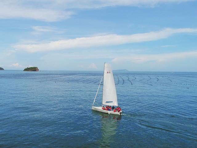 <五缘湾1日游>2成人起订、5人一艘船、天然港湾、邂逅白海豚 自选游玩时间 帆船出海