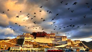 西藏拉萨+布达拉宫+大昭寺+雅鲁藏布大峡谷+南伊沟+巴松措+羊湖+纳木措卧飞10日游