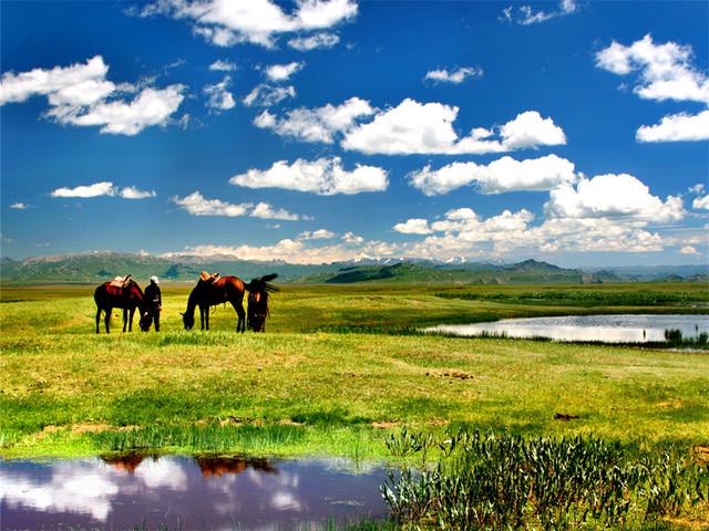 """游玩时长:约3小时 那拉提旅游风景区,地处天山腹地,位于被誉为""""塞外"""