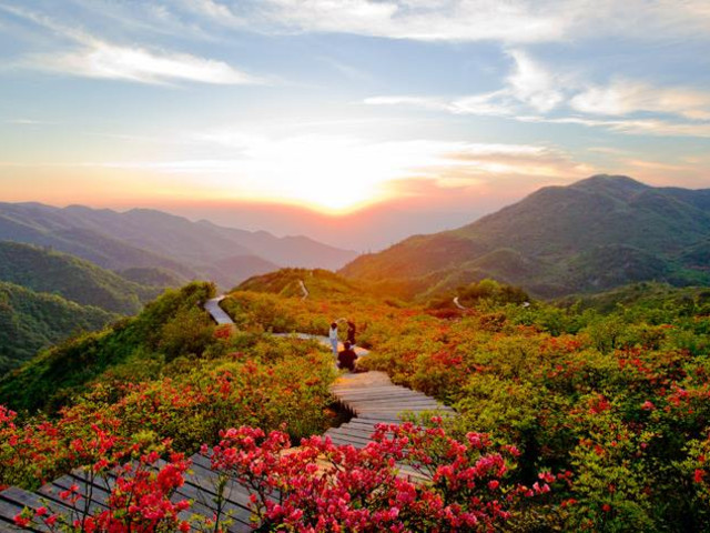 """5小时),大围山森林茂密,资源丰富,风景秀丽,气候宜人,被称为""""湘东绿色"""
