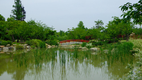 A red stone bridge over a lake with aquatic growing in the water in yuantouzhu park wuxi jiangsu province China.