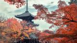 京都红叶2