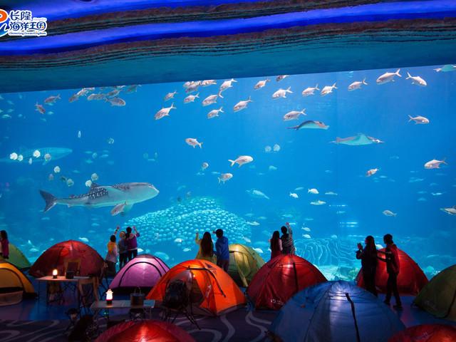 壁纸 海底 海底世界 海洋馆 水族馆 640_480