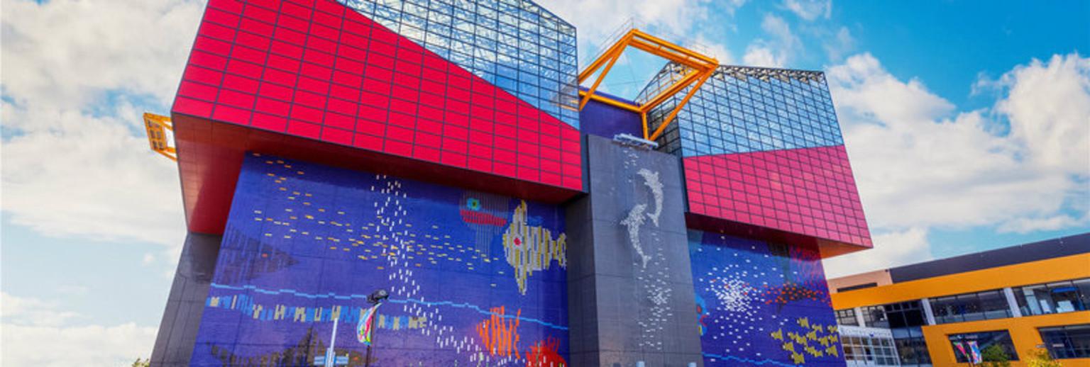 【2018】大阪海游馆v攻略攻略_大阪海游馆自助汨罗旅游景点攻略图片