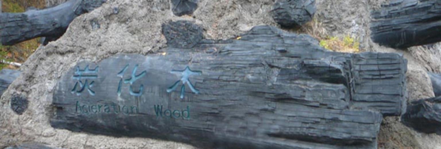 【2017】长白山炭化木攻略旅游攻略_长白山炭英国北部旅游遗址图片