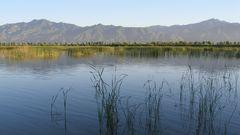 野鸭湖风景区