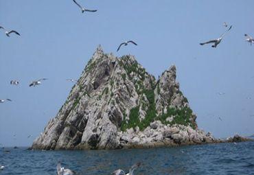大连神龙仙岛海上主题公园