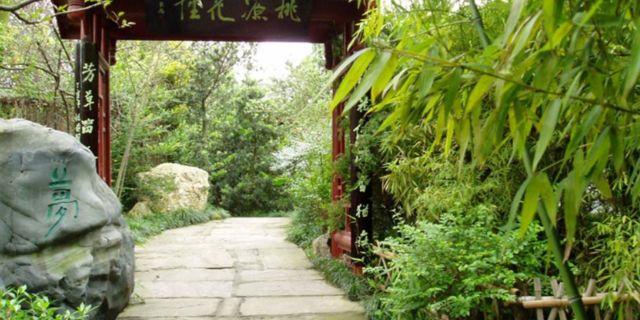 永康森林公园风景图片