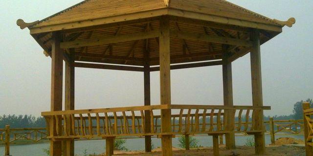 黄河森林公园风景图片