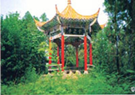【成武县图片】成武县风景图片_旅游景点照片