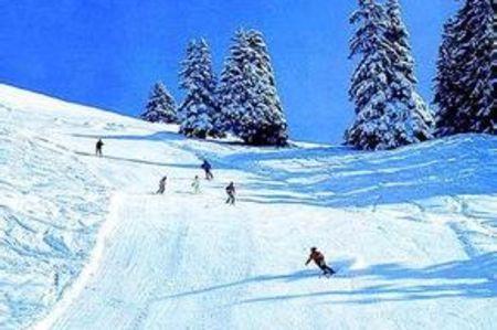 <亚布力-雪乡汽车3日游>哈尔滨起止,滑雪  滑道 马拉爬犁  冰雪画廊 雪地摩托登山 梦幻家园影视基地 二人转 舒心之旅