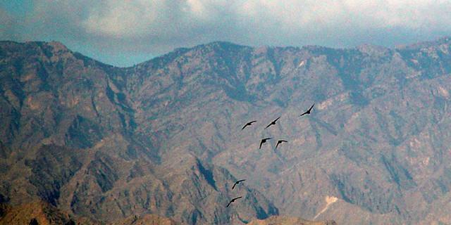 煤山贺兰风景图片