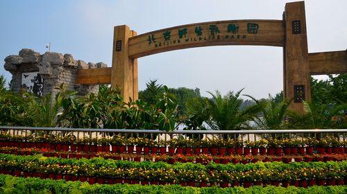 北京大兴野生动物园自驾2日游>宿源馨德润饭店(亦庄店)