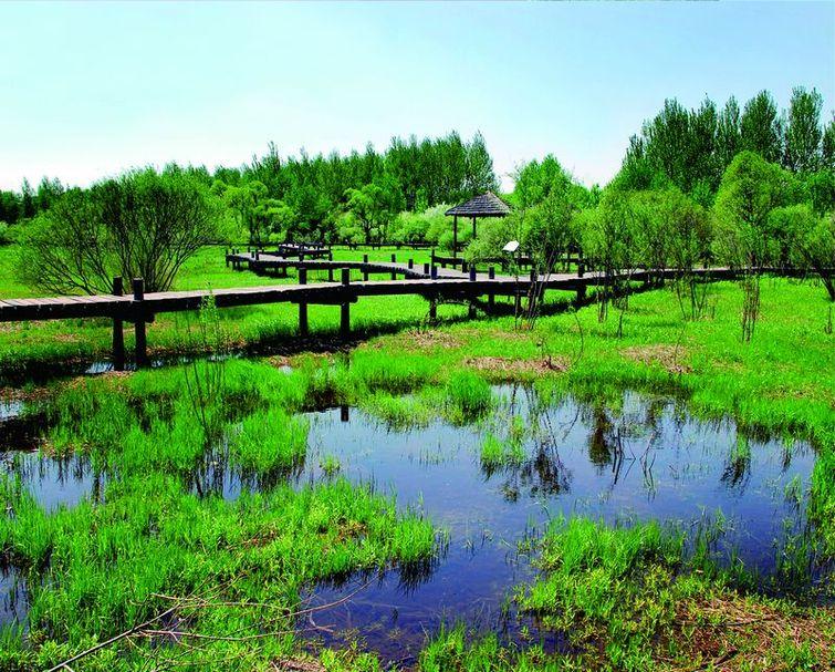 还有荷花湖,水阁云天,避雨长廊,花卉园,丁香园,中日友谊园,湿地植物观