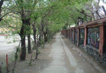 黑龙江旅游 鹤岗旅游 南山区图片