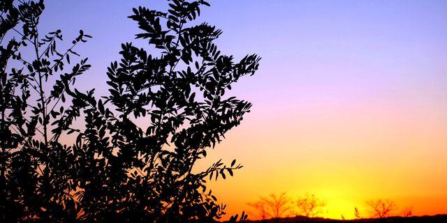 【屯留县图片】屯留县风景图片_旅游景点照片_途牛