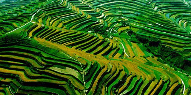 庄浪县风景图片图片