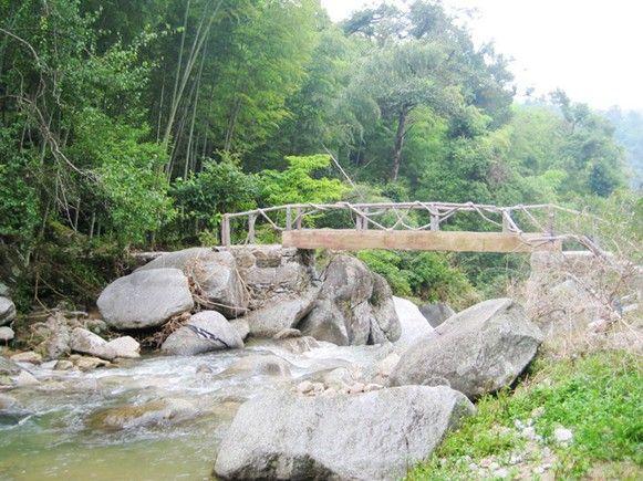 九龙江国家森林公园图片