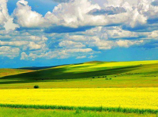 内蒙古草原的自然风光
