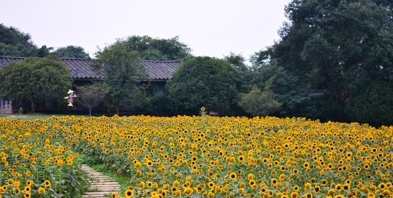 成都石象湖景区