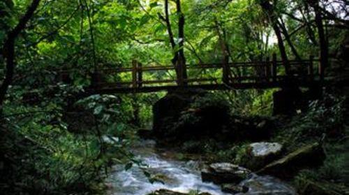 恩施咸丰坪坝营森林公园自驾2日游 宿坪坝营景区四洞峡山庄