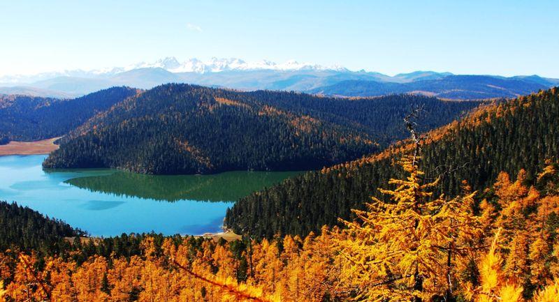 普达措国家森林公园图片