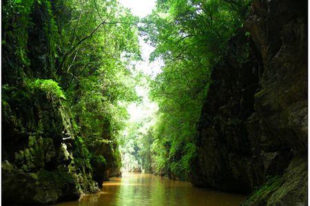 <昆明-石林+九乡1日纯玩游>欣赏红土高原喀斯特地貌,地下暗河,三环以内包接,1人也可预定