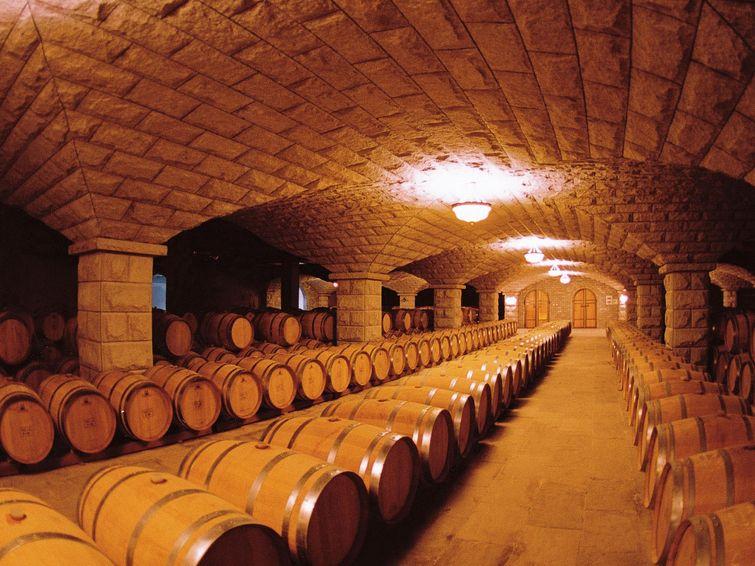 葡萄酒假期酒庄图片