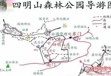 浙江宁波余姚四明山森.图片