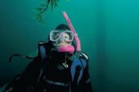 <澳大利亞阿德萊德袋鼠島1日游>微定制,游覽海豹灣保育公園、旗艦拱門、神奇巖石(中文團)(當地游)