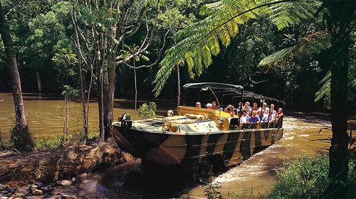 凯恩斯热带雨林自然公园