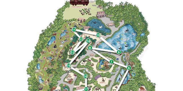 长隆野生动物园风景图片