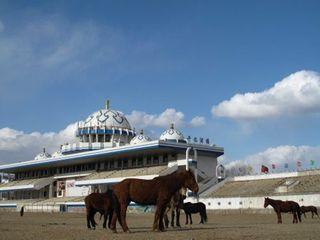 内蒙古赛马场旅游攻略 2016内蒙古赛马场自助游攻略