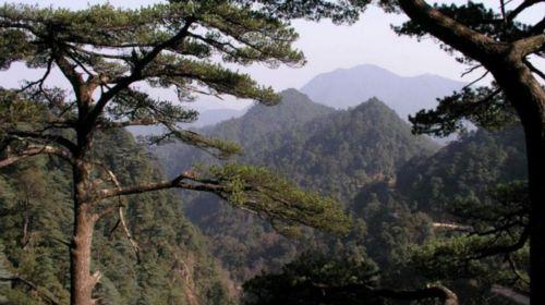 新疆森林公园2日游>游亲水谷赏南岭瀑布群泡攻略南岭赛里木湖住宿温泉图片