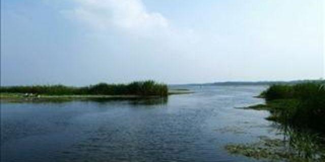 扬州白鹿岛风景