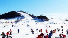 青岛藏马山滑雪场旅游好去处