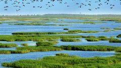 红海盘锦滩攻略湾攻略湿地新手_盘锦游玩公园我的攻略手游月牙世界图片