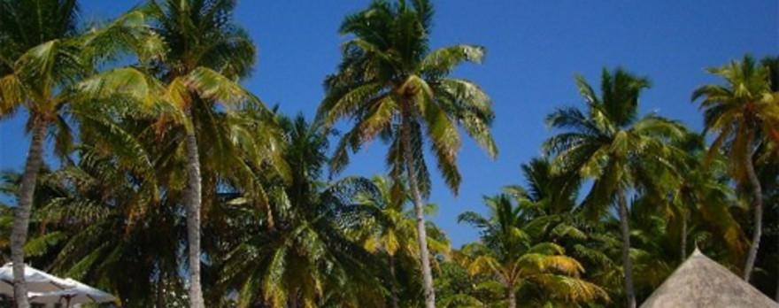 亚里南环礁