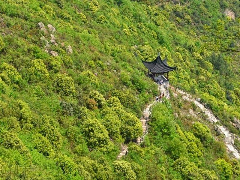 江苏大阳山国家森林公园俯视景观