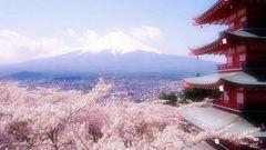 日本清水寺旅游攻略2016_ 清水寺自助游攻略_清水寺哪有好玩的地方