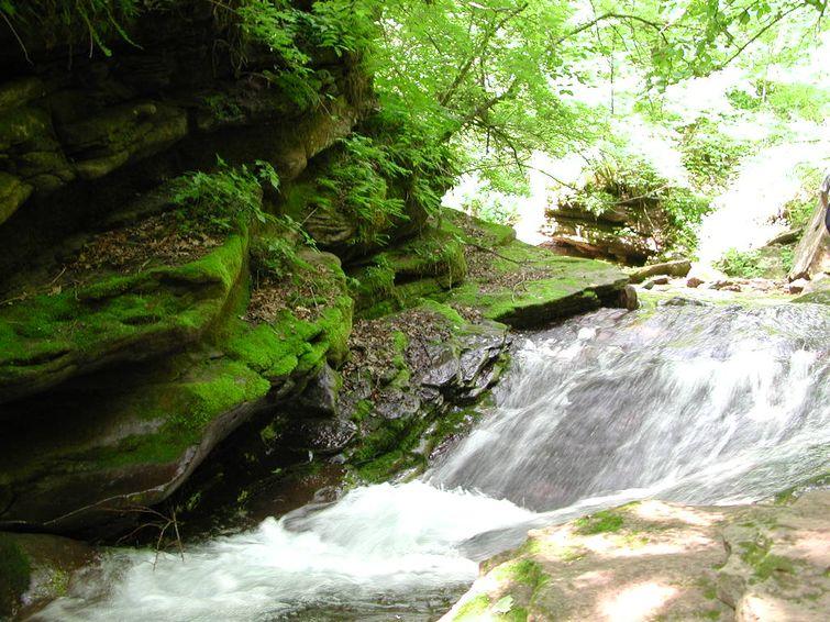 小南川是六盘山国家森林公园的王牌景区,位于六盘山腹地凉殿峡和二龙