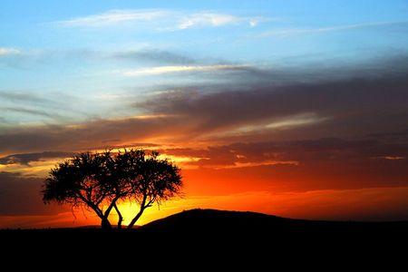 <肯尼亞-坦桑尼亞-埃塞俄比亞-納米比亞-津巴布韋-博茨瓦納-贊比亞-7國機票+當地24日游>非洲七國 一價全含 紅沙漠、維多利亞大瀑布