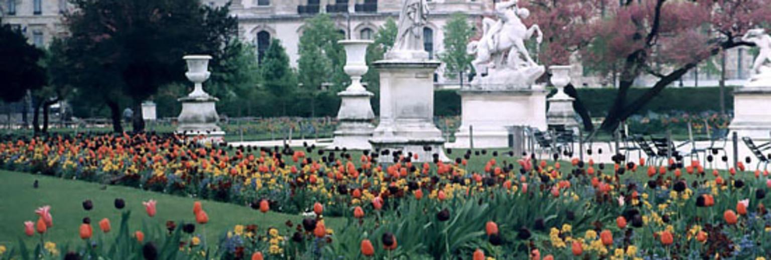 杜乐丽花园2